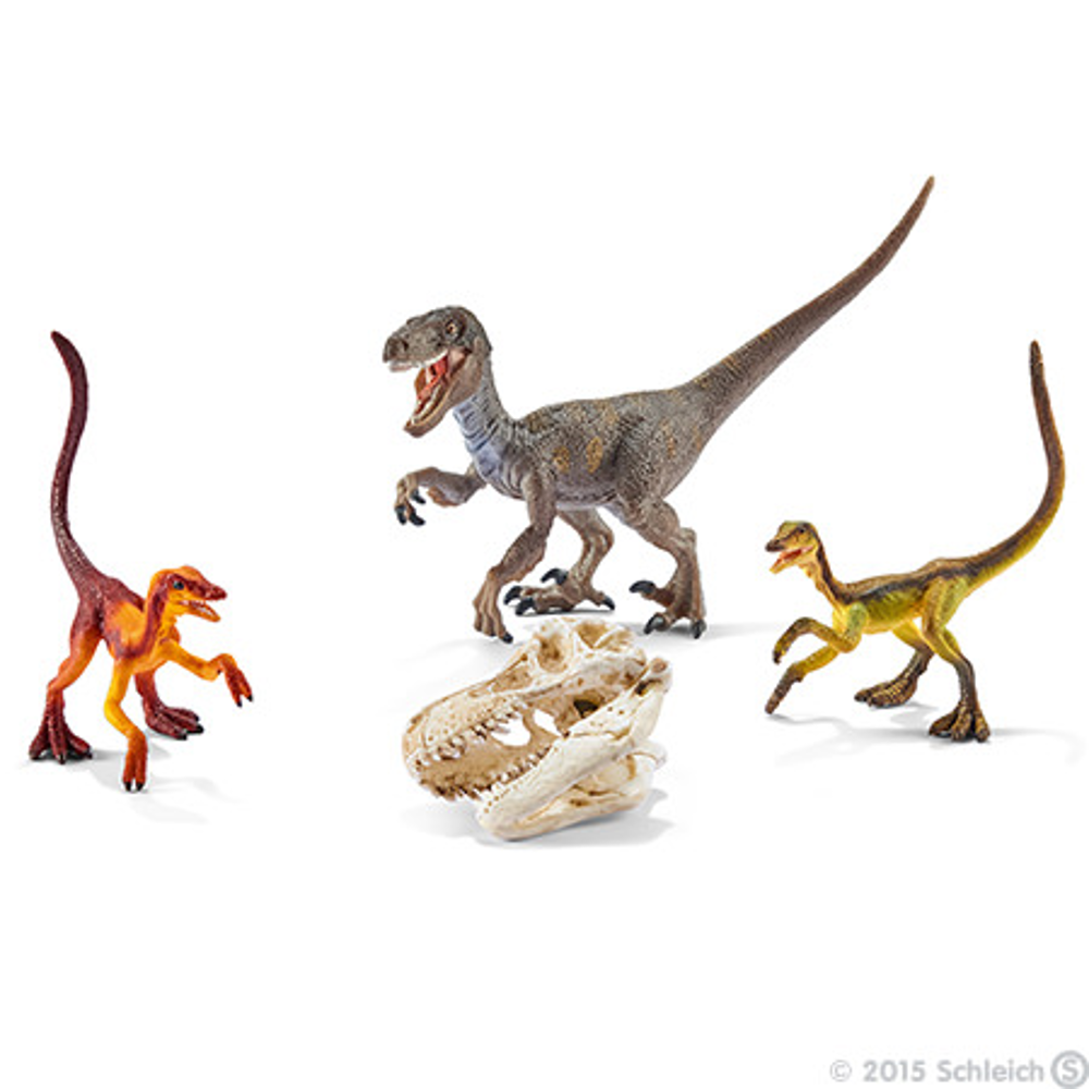 Velociraptor auf der Jagd